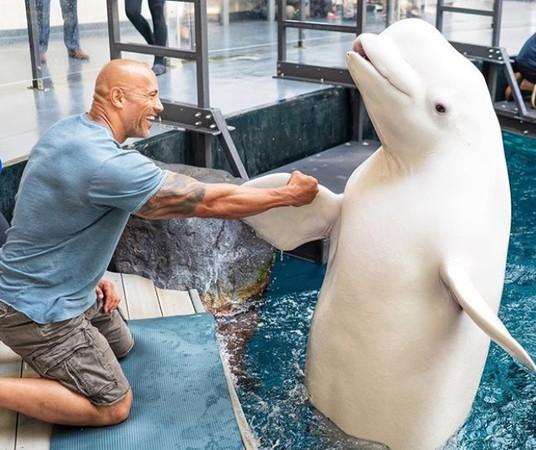 「想當水行俠!」巨石強森PO水族館照 網:對你很失望