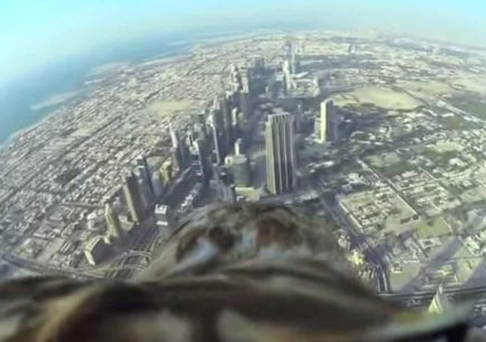 用「老鷹第一視角」飛越世界最高塔!360度視野讓你看清世界:地球好美❤