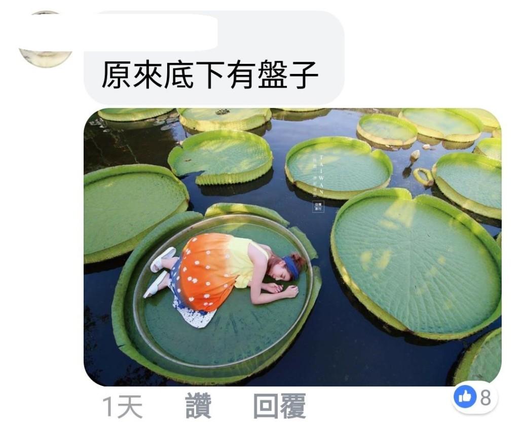 女子想拍「坐王蓮漂浮美照」 腳一踩跌成落湯雞:妳查克拉沒凝聚好!