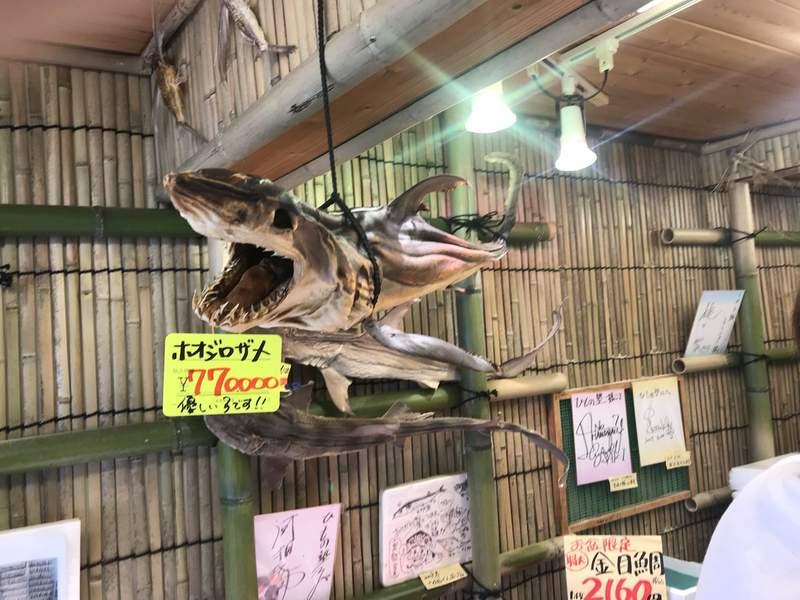 打人一定超痛...比正常魚乾大100倍 「超級乾貨店」:鯊魚還算小咖!
