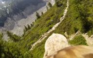 老鷹是這樣看世界的!第一視角俯瞰「超真實墜落感」讓你體驗飛行的感覺