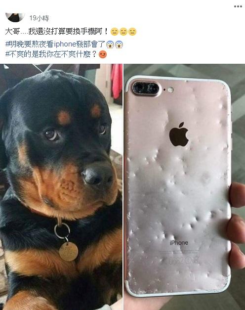 案情不單純!蘋果新機發表在即 狗狗把手機當潔牙骨狂啃:幫你換一隻新的~