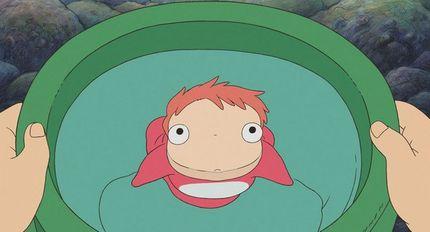 真實版「波妞魚」憨呆張嘴超萌 不太會游泳只能吸在石頭上討生活!