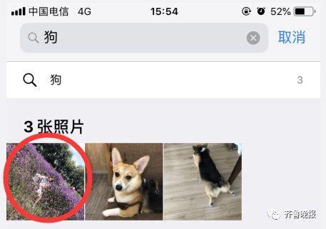 iOS12新功能超邪惡!「相簿搜尋功能」準確過頭...打食物出現自拍照QQ