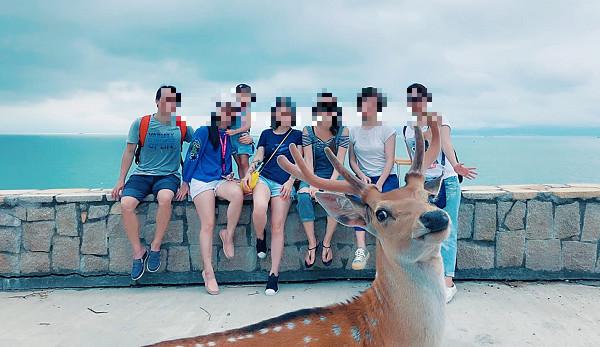亂「鹿」!鹿鹿回眸搶鏡 合照一臉跩樣:幫窩把後面的人P掉