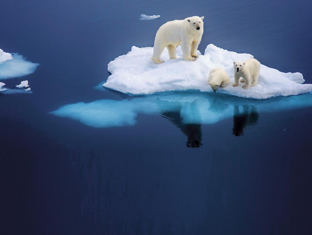 全球暖化導致「冰層底古老病菌」開始失控 專家警告:末日真的開始倒數了