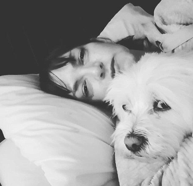 好心婦人「收養朋友不要的狗」變一家人 朋友「6年後提告」:人家只是去環遊世界!