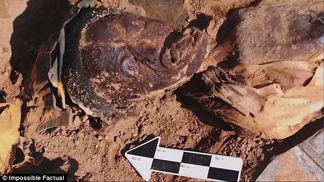 150年前「天花病逝女子」出土 臉部幾乎沒差還「穿著及膝襪」!