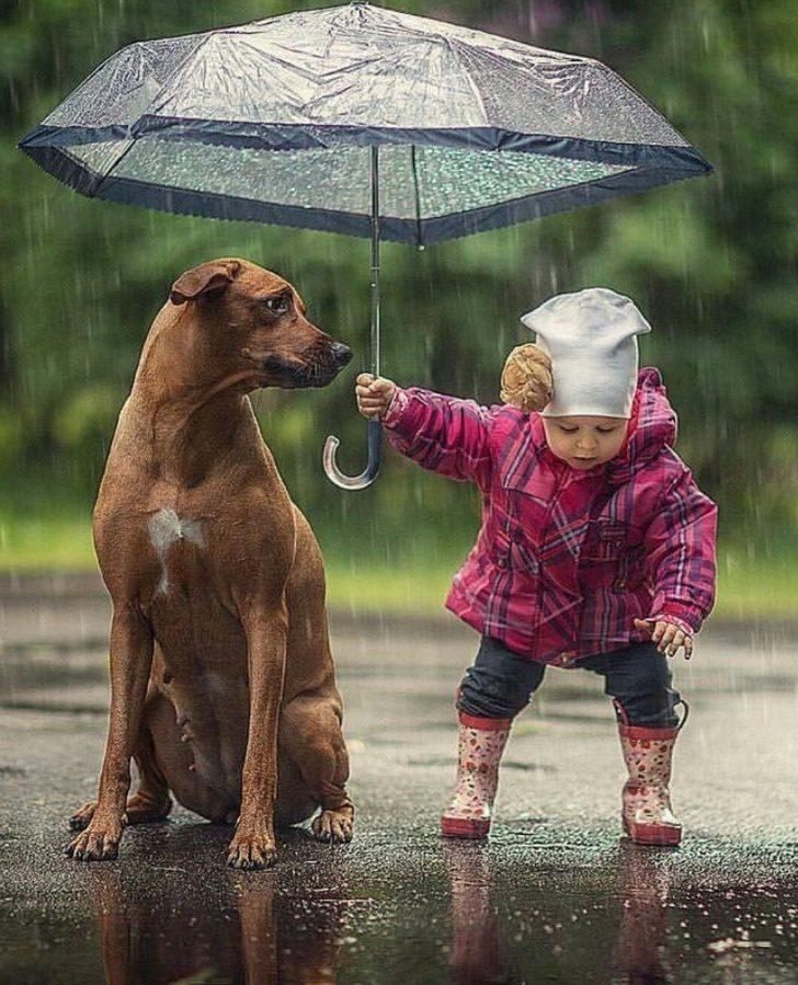 17張讓你「停止厭世」的暖心畫面 連動物都知道要互相幫助!