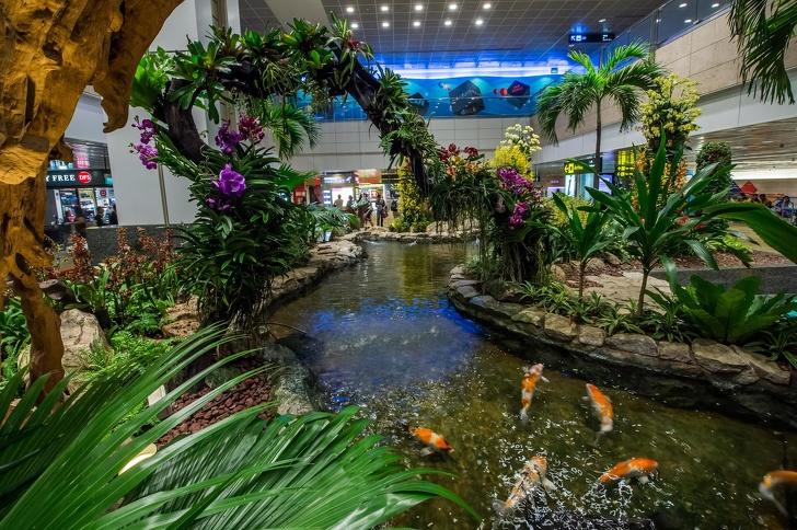 10座「全球最驚艷的機場」 熱帶雨林放進機場裡根本美到爆炸♡