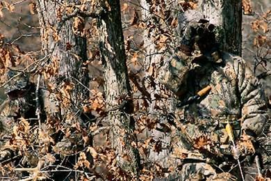 13張證明狙.擊手「比變色龍還融入背景」的專業偽裝照 第一眼根本找不到!