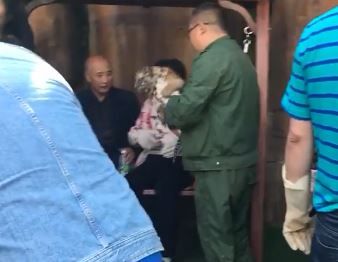 有沒有想過小虎感受!哈爾濱動物園「愛的抱抱」 小幼虎猙獰逃脫...網友心疼:拜託放了吧!