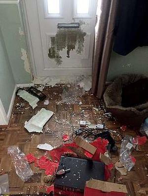 「無敵破壞犬」抓破大門!主人花超過6萬塊整修費 暴走行為背後卻隱藏心酸…