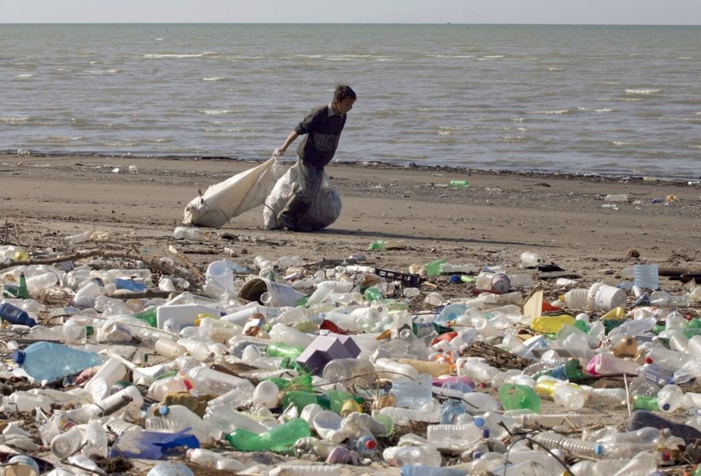 大鯨魚擱淺海灘 切肚子一看「6公斤人類垃圾場」還有整包綁好好的!