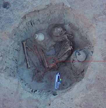 埃及挖出「3700年的孕婦」 骨頭位置詭異...肚子驚見「正要出生的寶寶」!