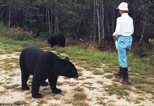 美魔女「跟熊同居28年」最終卻長眠森林 後頸「背叛的痕跡」真相讓人鼻酸...