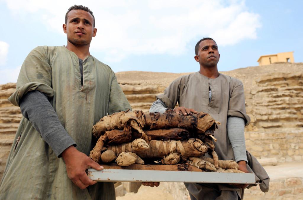 古埃及人全是貓奴!波斯將領「把貓當人質」 埃及士兵下不了手全投降了...