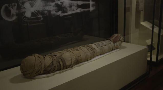 尼羅河再寫下歷史!3000年「保存超好未開封」木乃伊被挖出 打開瞬間震驚:臉蛋和頭髮完美到像剛躺下
