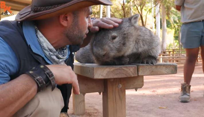 這位「袋熊小可愛」生性就是天使 連拉出來的屎都和平到...你會微笑:)