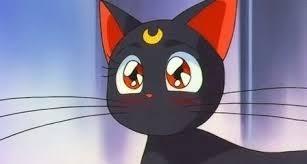 古秘魯遺跡挖出19個神秘雕像 其中還出現「月光仙子黑貓露娜」竟然是真的神貓!