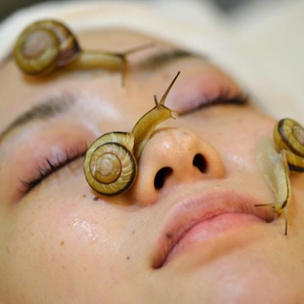 愛美不愛命!15個讓人寧願醜也不敢嘗試的「美容奇招」 蜜蜂療程光看就超怕