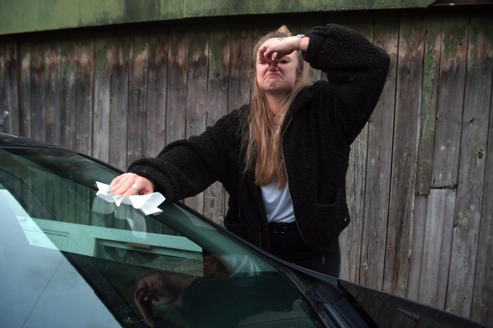 連續2天都該簽威力彩 她車頂「2大新鮮的屎」一路滑到玻璃...見證人類最低下的狀態