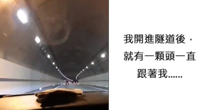 影/柴哥顯靈啦!進隧道後玻璃浮現「閃爍狗頭」 網友嚇到ㄎㄧㄤ掉:什麼鬼東西