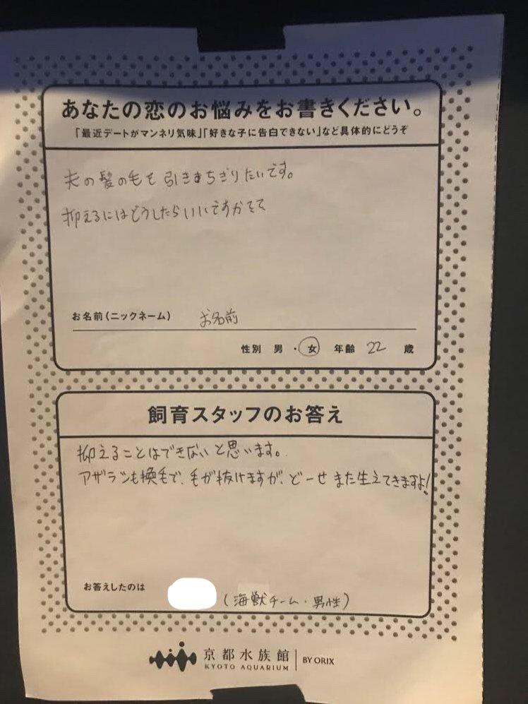 京都水族館「戀愛諮詢室」超幽默 老公耍廢不顧小孩...工作人員神回:叫他學學海馬!