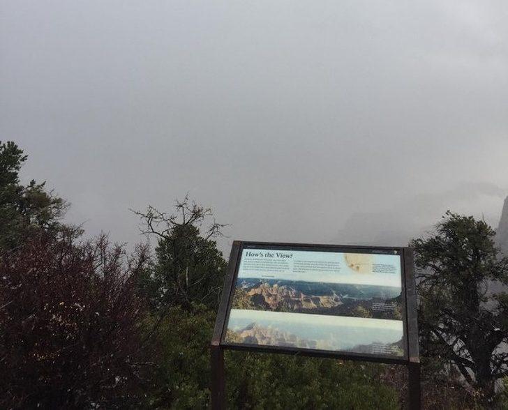 20位證明「你的人生絕對比較好過」的超衰人 開車4小時看大峽谷...這片是霧在耍我嗎