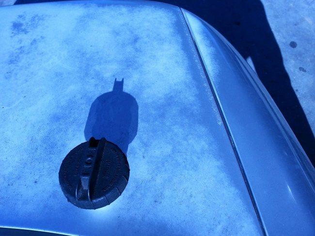 19張讓你忍不住看3次「連影子都懂得騙你」的巧合照 可愛小貓直接變成蝙蝠俠!
