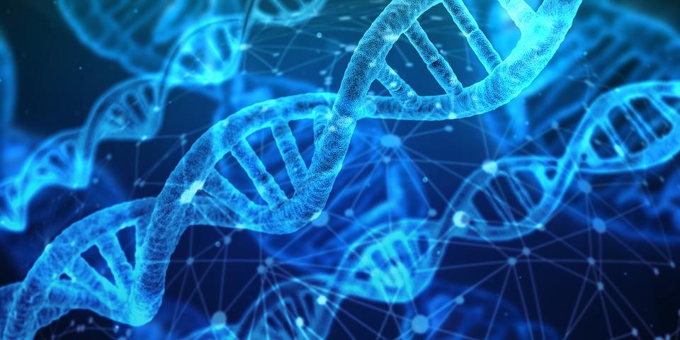 兒子送DNA鑑定給家人當聖誕禮物 卻意外揭開媽媽內心「最崩潰的感情」連爸爸都瘋狂咆哮!