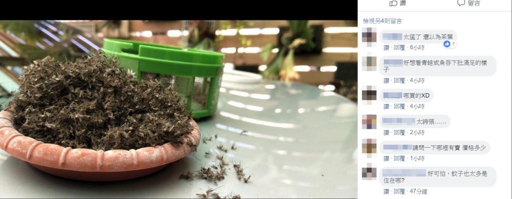 實測捕蚊燈效果超驚人!「7天獲蚊子山一座」 網歪樓:你家到底是住在哪啦