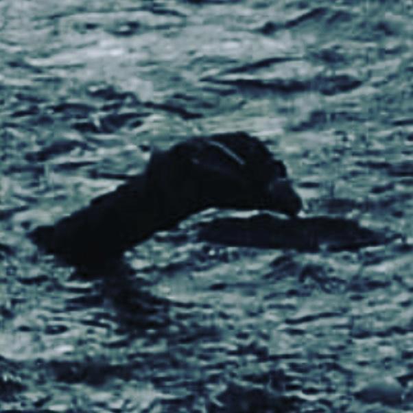 《水行俠》水怪真實版被拍到 湖邊傳來嗚嗚聲...讓他害怕到只想拿出三叉戟!