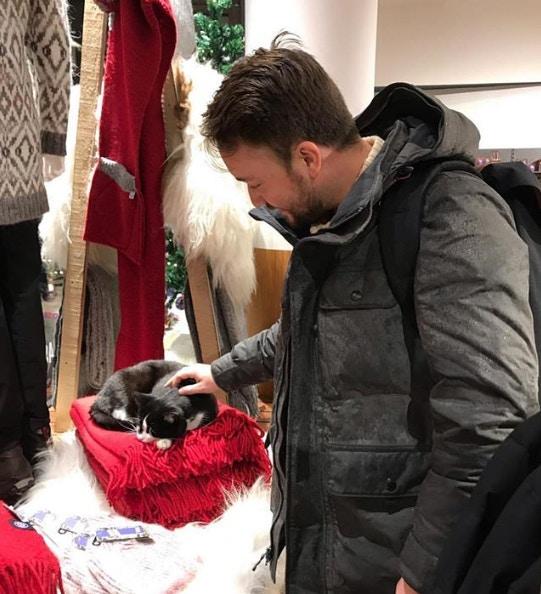 冰島的明星被綁架了!流氓「不搶錢只搶貓」嚇壞全國貓奴 掃街搜尋1晚找回...比警察還猛!