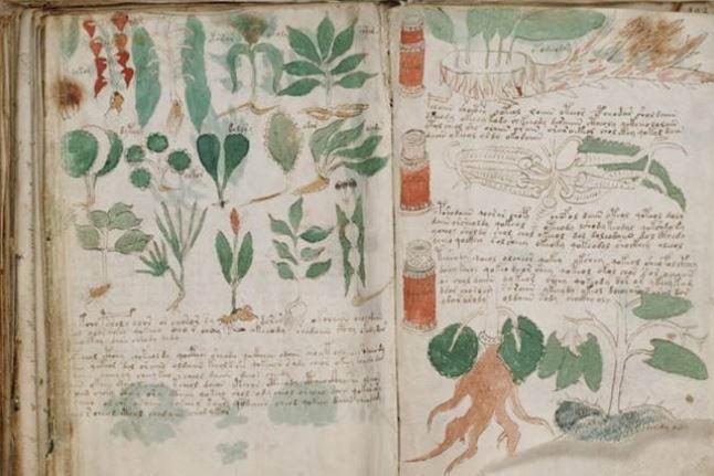 9件世界上充滿謎團的「最詭異古物」 15世紀煉金術書籍爆光...卻連歷史學家都嚇到退後