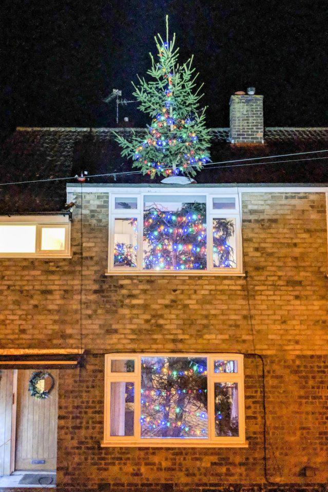 他讓8公尺的聖誕樹「直接穿過整棟房子」 小孩興奮到尖叫網友卻冒冷汗:你老婆會恨你
