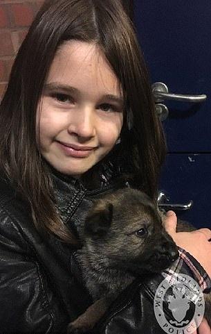 10歲女孩「突然變身神力女超人」 跨過柵欄障礙狂奔追小偷...卻在面對面之後被按住手臂!