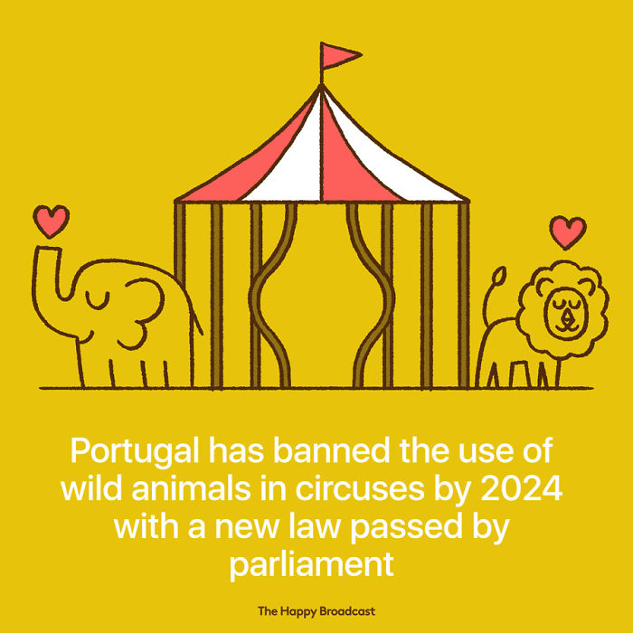 他畫出20張近期世界「媒體沒報的最溫暖新聞」 小老鼠們正在保護南非大象!