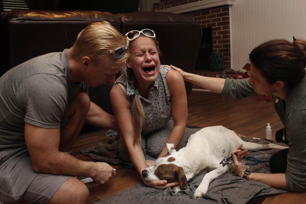 他拍下飼主最害怕面對的那一天 毛孩子「永遠闔眼」的下一秒...再也忍不住眼淚!