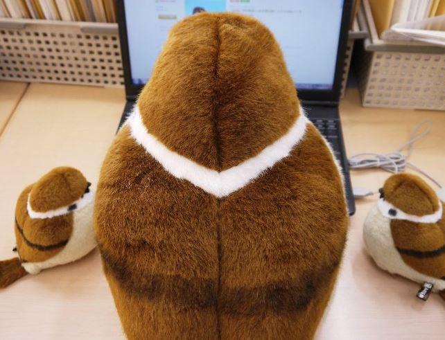 日本推出超療癒「大+小麻雀」掃光你的錢包 一整個「麻雀家庭」擺在角落真的太完美❤️️