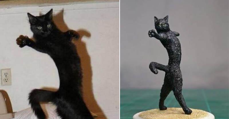 日本神人把10張「經典梗圖變成實體」 超可愛的貓咪「拿掉盒子後」的真相超驚悚