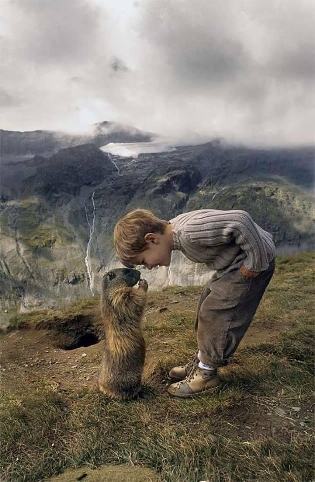 27個證明「最純潔的靈魂真的存在」的組合!男孩每年都會回到那座山丘找他的「好夥伴」❤️️