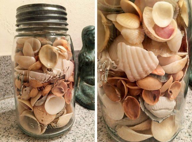 23張「在用火星人邏輯生活」的非一般人類 買漂亮貝殼送人...結果裡面都是開心果殼