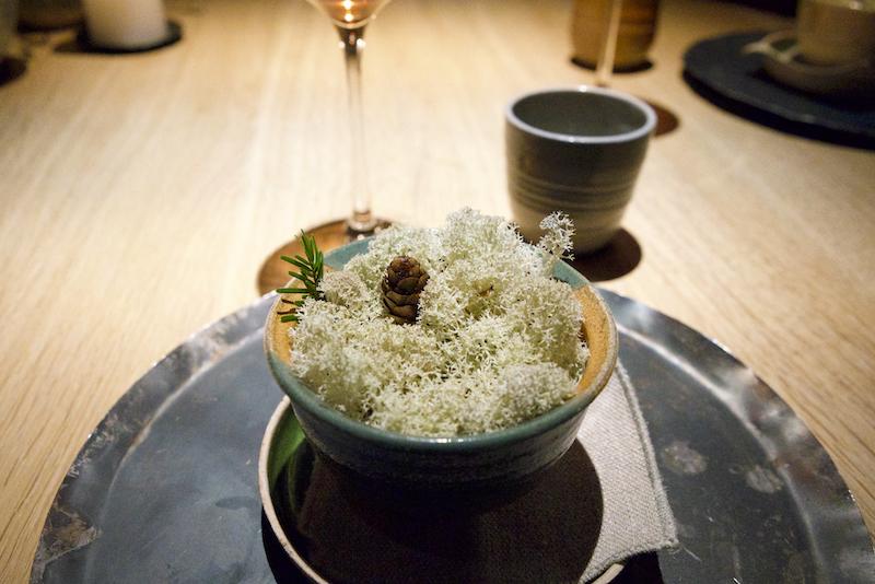 絕對不會讓人想吃的天價米其林 一餐10000元「全是大自然最噁心的食材」胡椒竟是螞蟻!