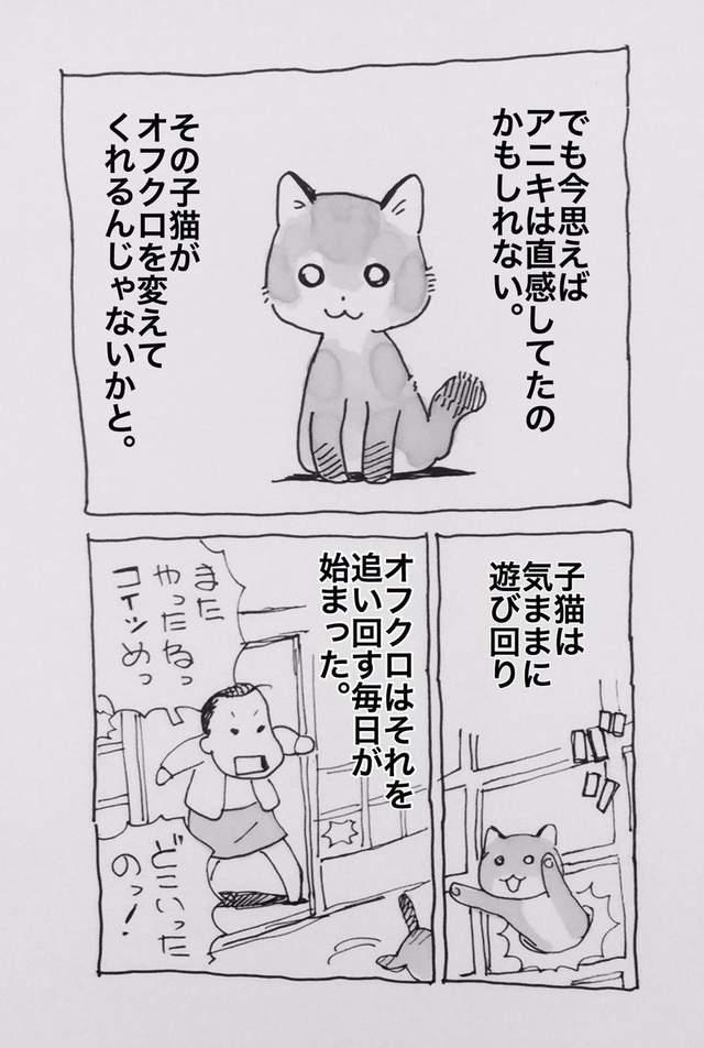 失智母親開始責怪「全家人都是偷存摺的壞蛋」 直到一隻貓咪出現後...竟喚醒她最溫柔的那面!
