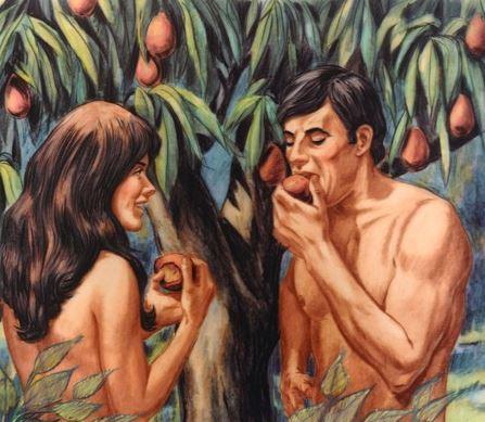 光靠「亞當❤夏娃」就能創造全人類 專家剖析:神秘Y染色體的威力功勞最大!