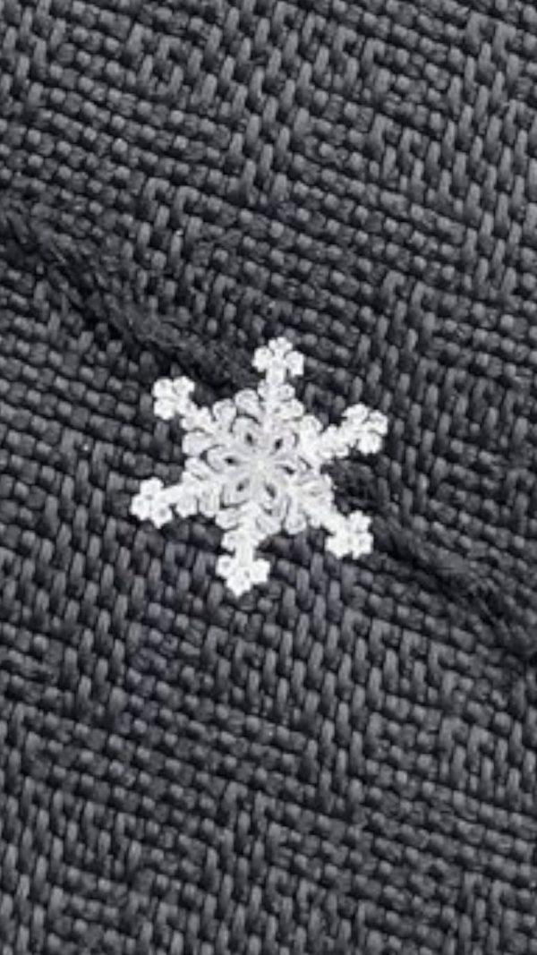日網友分享「千年一遇最美雪花」吸30萬讚 放大10倍看「極精緻六角紋路」根本上帝的禮物!