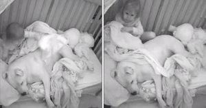 3歲小妹睡覺緊抱狗狗 半夜幫蓋被被...溫馨影片網友秒怒:爸爸腦袋有問題?
