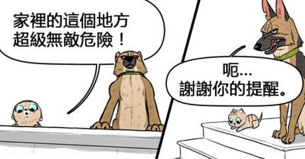 5張藝術家畫出「溺愛小貓咪的大狗狗」療癒故事 教貓咪反弄小混混太好笑!
