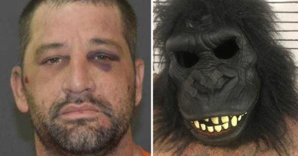 全鎮民眾狂報案「每晚窗外都有黑臉怪獸在狠盯」 警察在床底下找到巨獸傻眼:牠蠢到卡住了